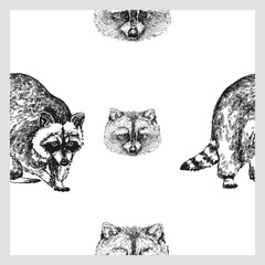 Seamless pattern of hand drawn sketch style raccoon. Vector illustration isolated on white background.