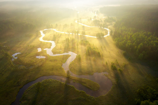 Misty morning river in sunlight. River landscape aerial view. Riverside view from above. Summer nature in sun rays. Drone view on  sunny nature. Scenery river top view.