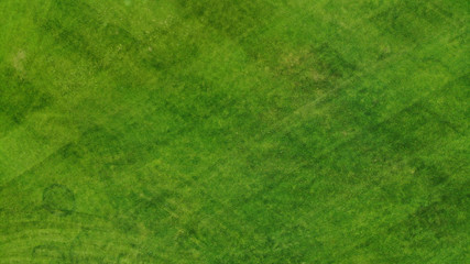 Aerial. Green grass texture background. Top view from drone.