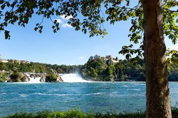 Rheinfall in der Schweiz
