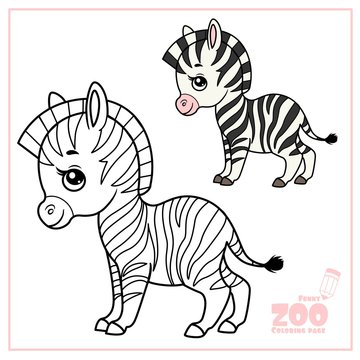 Cute cartoon little zebra color and outlined on a white background  for coloring page