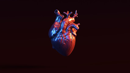Silver Anatomical Heart with Red Blue Moody 80s lighting Front 3d illustration 3d render