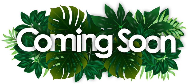 Coming soon word and green tropical's leaves background