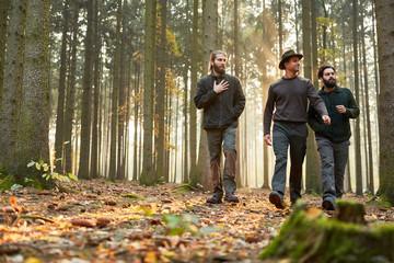 Drei Förster gehen zusammen durch Wald