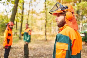 Drei Holzfäller im Wald in Schutzkleidung