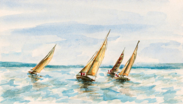 The race of sailboats