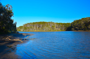 Woolgoolga Lake and creek are sorrunded by trees near Coffs Harbour.  Woolgoolga Lake is a great place for canoeing, kayaking, swimming and birdwatching.
