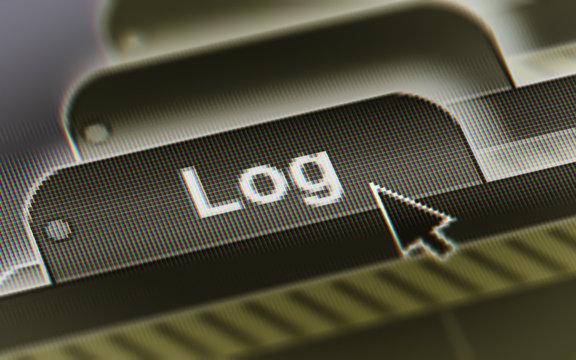 Log. A file in a screen.