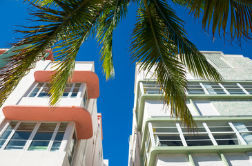 Detail close-up of typical colorful Art Deco architecture with tropical palm tree on Ocean Drive in South Beach, Miami, Florida