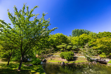 Japanese garden in Hasselt, Belgium during a sunny summer day