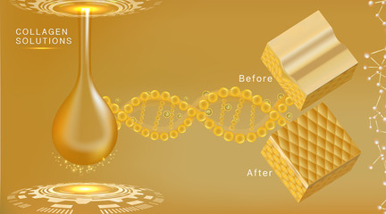 Hyaluronic acid before and after skin solutions ad, gold collagen serum drop with cosmetic advertising background ready to use, illustration vector.