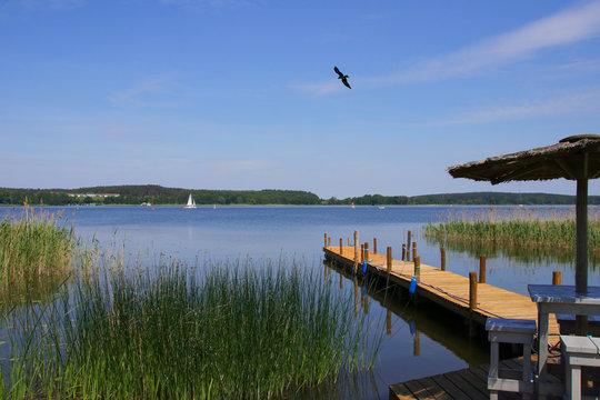 Mueritz national park. Holiday destination woblitz lake, Mecklenburg Lake Plateau
