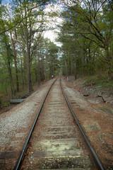 Fotobehang Spoorlijn railway in the forest