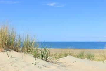 Dünen und Meer bei Renesse