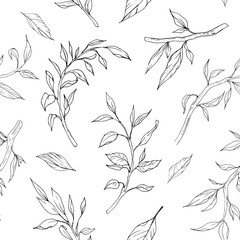 Seamless pattern with branches outlines. Hand drawn decorative elements. Vector illustration