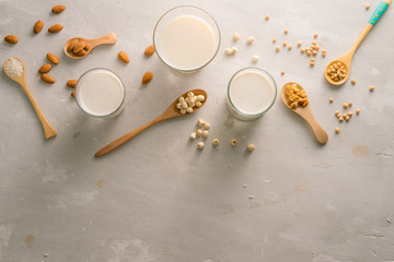Glasses of milk with nuts: Macadamia, almond, soy, rice, lotus. Top view.
