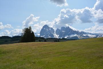 Foto op Plexiglas Bergen Tirol