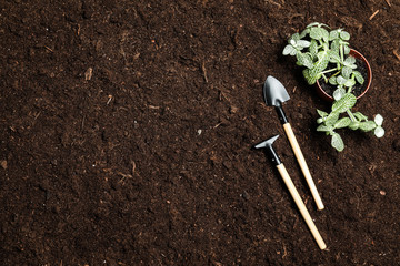 Flat lay composition with gardening equipment on soil, space for text Fototapete