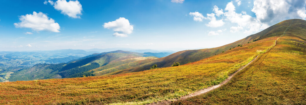 panorama of a mountain landscape on a sunny day. beautiful scenery in august. footpath to the top along the grassy meadow. wonderful travel backdrop with clouds on the sky. success concept