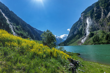 Wall Mural - Summer alpine landscape with mountain lake. Stillup, Stillup Lake, Austria, Tirol