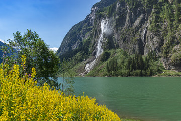 Wall Mural - Idyllic mountain landscape in the Alps with blooming flowers, mountain lake and waterfall. Stillup, Stillup Lake, Austria, Tyrol