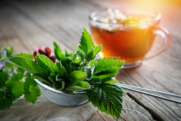 Medicinal plants and herbs in tea infuser, healthy herbal tea cup on background.