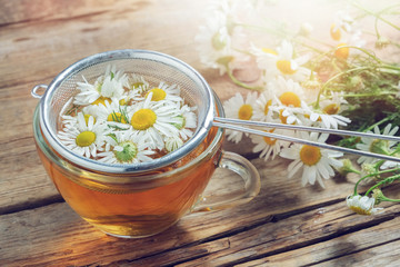 Daisy flowers in tea infuser and healthy chamomile herbal tea cup.