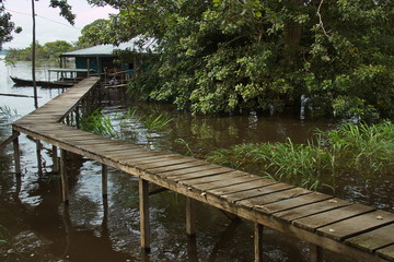 Jetty in rainforest at Amazonas river in Puerto Narino in Colombia