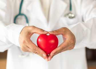 Fototapeta Cardiovascular disease doctor or cardiologist holding red heart in clinic or hospital exam room office for csr professional medical service, cardiology health care and world heart health day concept obraz