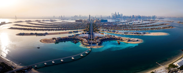 The Palm island panorama with Dubai marina in the background aerial Wall mural