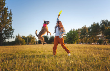 Young beautiful curly girl playing with her dog with a  frisbee in summer park