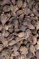 Black cardamom close up, could be used like the background