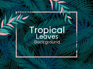 Wall Mural - Tropical leaves with pink line frame on black background vector illustration