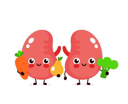 Cute healthy happy kidneys character