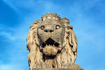 Lion on Budapest Chain Bridge