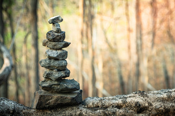 Stone on wood in forest with sunset zen like concept