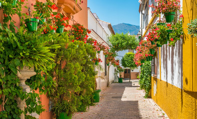The beautiful Estepona, little town in the province of Malaga, Spain. Wall mural