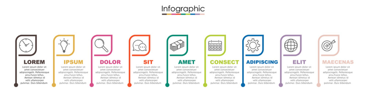 Vector infographic template with nine steps or options. Illustration presentation with thin line elements icons.  Business concept graphic design can be used for web, paper brochure, diagram,