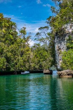 Waigeo, Kri, Mushroom Island, group of small islands in shallow blue lagoon water, Raja Ampat, West Papua, Indonesia