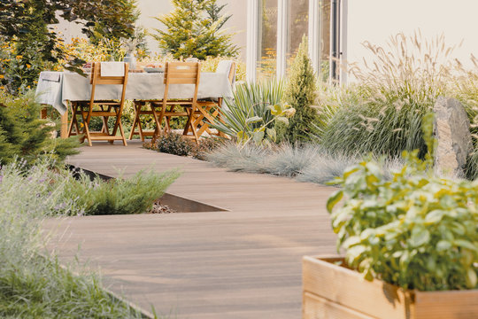 Plants and wooden chairs at table with food on terrace of house in the summer