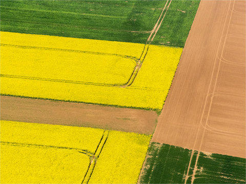 vue aérienne d'un champ de colza à Serans dans l'Oise en France