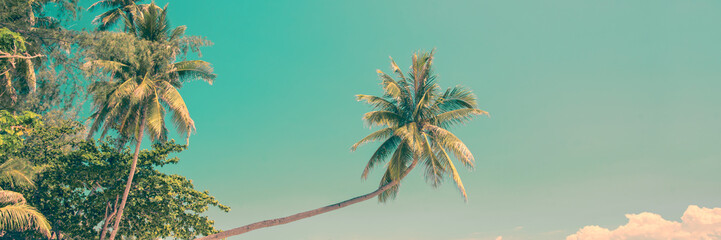 Wall Mural - Tropical panorama with a leaning palm tree, vintage process