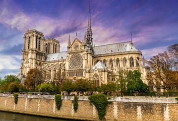 Fototapete - Cathédrale Notre-Dame de Paris en France