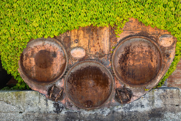 Big rusted barrel overgrown with a creeper