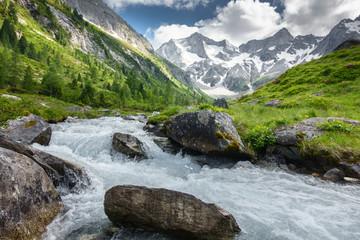 Fototapeta Gletscherwasser in einer Almlandschaft in Österreich obraz