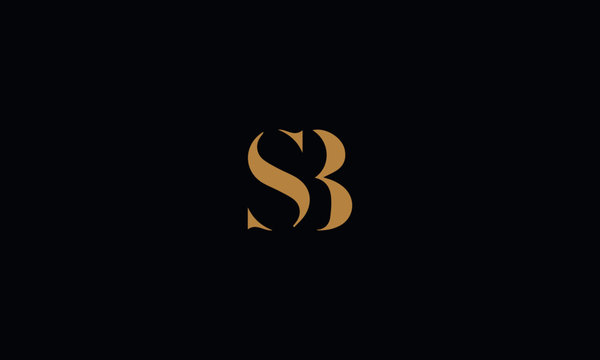 SB logo design template vector illustration