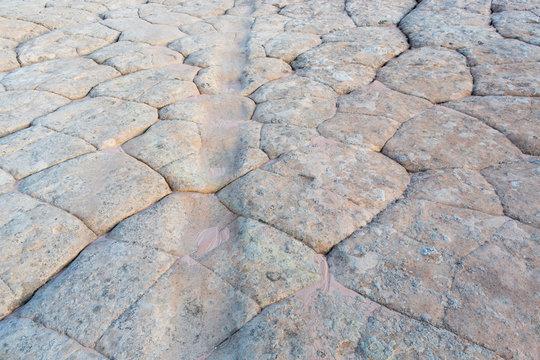 Detail of worn riverbed over sandstone rock formations, White Pocket, Vermilion Cliffs, AZ