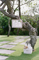 "Fun outdoor wedding games """"ring toss"""""