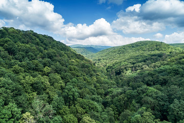 Mountains covered with green forest and river. Carpathians. View from above. Video shot by drone.