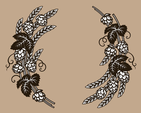 Beer hops branches with wheat barley ears, leaves and hop cones. Elements for brewery design, beer prodaction, pub and bar decoration. Hand drawn vector.